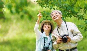 做旅游怎么赚钱?老年旅行团项目看一看_小峰创业汇